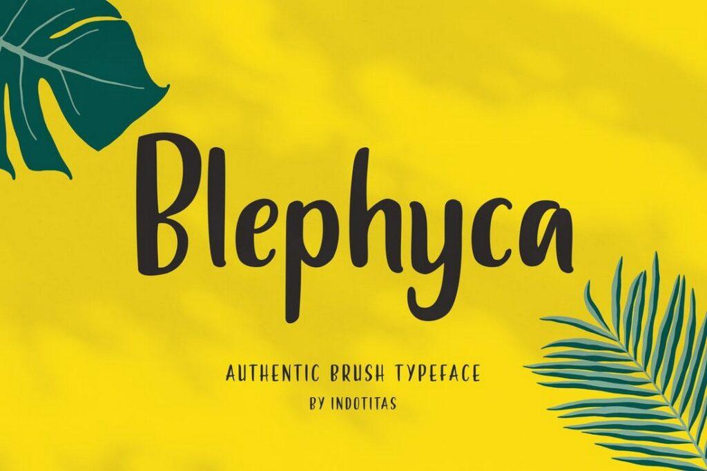 Blephyca tipos de letras