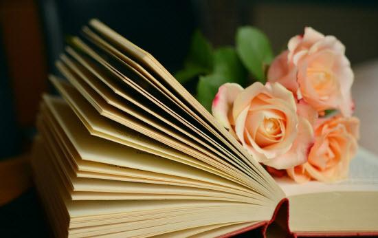 imagen de una novela para el artículo cuanto cuesta imprimir un libro en una imprenta
